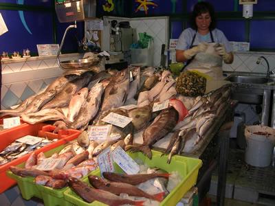 Mercado da Ribeira Lisbon fish