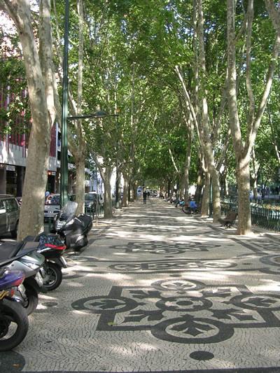 Lisbon shopping Avenida da Liberdade trees
