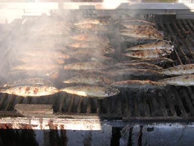 Lison Santo Antoinio June sardines