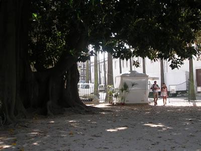 Botanical Garden Lisbon ticket office