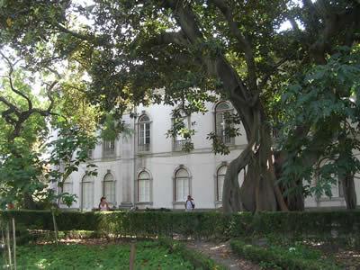 Lisbon botanical Garden 3 Bairro Alto