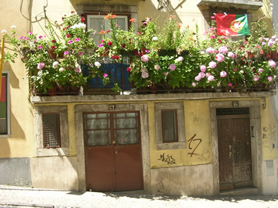 Mouraria Calçada de Santo André balcony with flowers