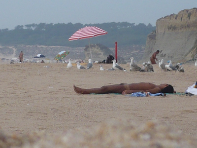 Meco beach praia 40 km south of Lisbon popular nudist gay beach