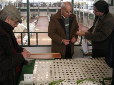 Lisbon Mercado da Ribeira Coin Collectors Market2