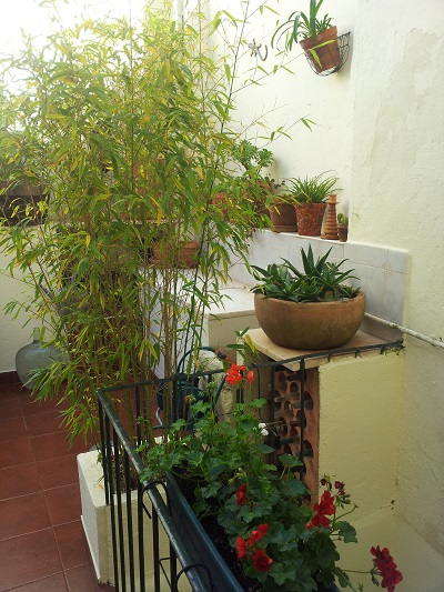 Mouraria apartment Lisbon patio March 2016