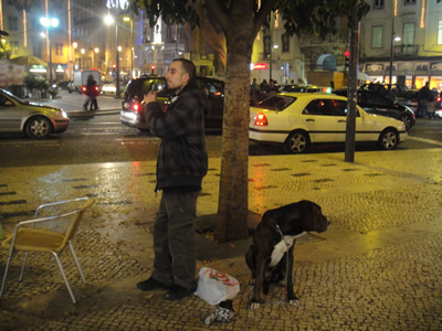 Dogs in Lisbon Praca Dom Pedro IV Chistmas time
