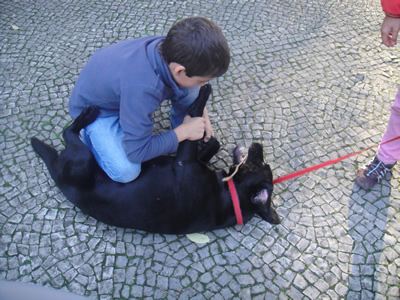 Lisbon Estrela Park children dogs