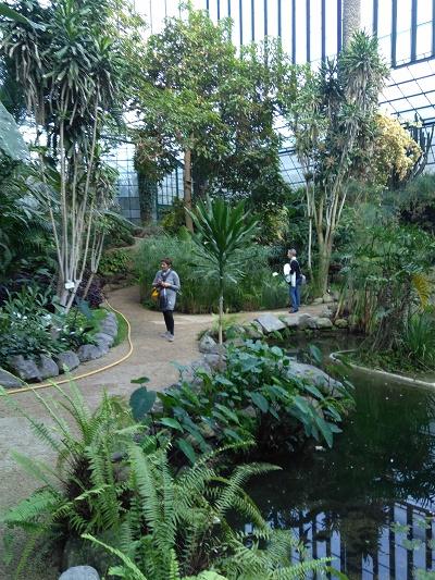 greenhouse-lisbon-estufa-fria-nov-2016-5